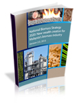 National Biomass Strategy 2020
