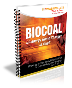 Biocoal - Bioenergy Game Changer in Asia